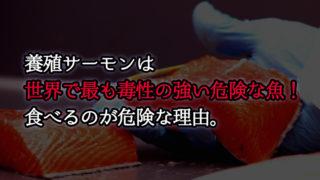 養殖サーモンは世界で最も毒性の強い、危険な魚!食べるのが危険な理由。