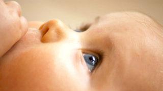 母乳と食事の深い関係。私が実感した、母乳の質を上げる食事6選