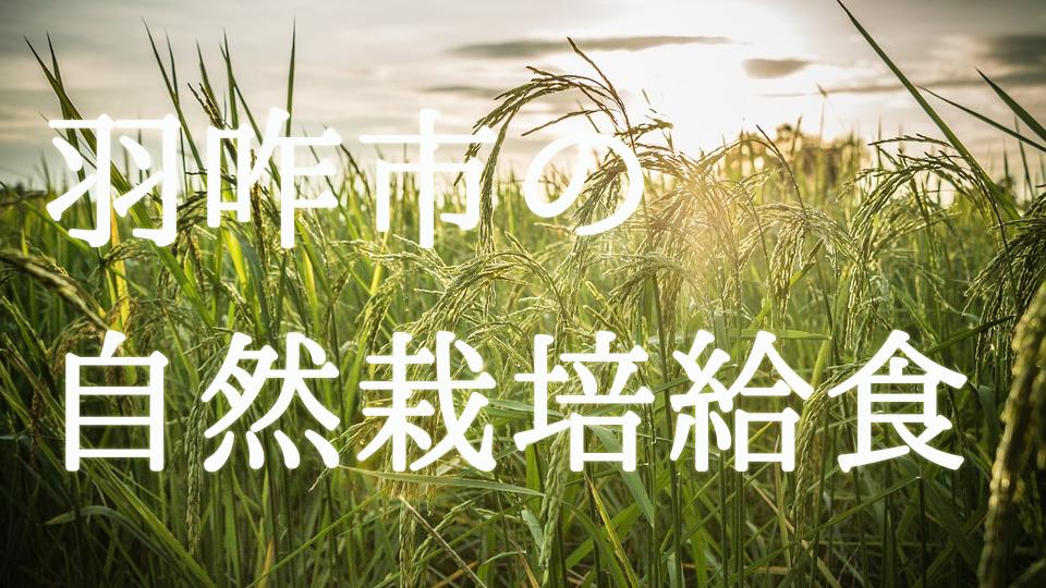 革命的!!全国初の試み。羽咋市が給食に『自然栽培』の米と野菜を使用