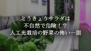 とうきょうサラダは美味しいけど不自然…人工光栽培の野菜ってどうなの?